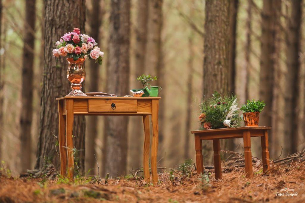 Renovação de votos - bodas de madeira - na floresta